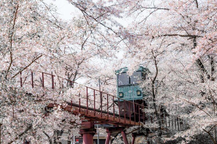 柴田町船岡城址公園